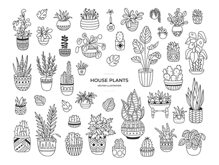 House plants hand drawn illustration set. Simple elegant modern design. Craft concept for home interior decorations, design elements, logos. Isolated house plants collection.