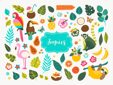 Set of tropical plants and animals design elements with toucan, parrot, cocktails, leaves, jungle palms, sloth, flamingo, lemur, flowers and fruits. Perfect for summer party decorations, logos. Çizim