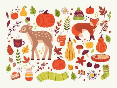 Vector collection of autumn design elements with baby deer, fox, pumpkins, foliage, hot drinks, berry, apples, pears and warm clothes. Hand drawn flat illustraion in cartoon style. Seasonal greeting cards, print, logo design.
