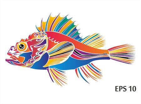 decorative fish: decorative fish