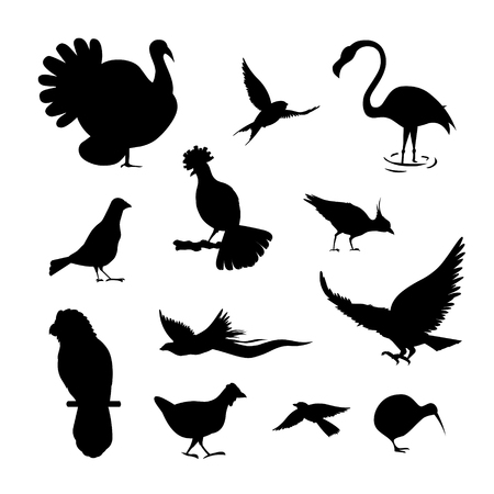 roster: Set of simple bird silhouette. black color