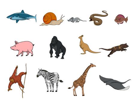 animal: animal set