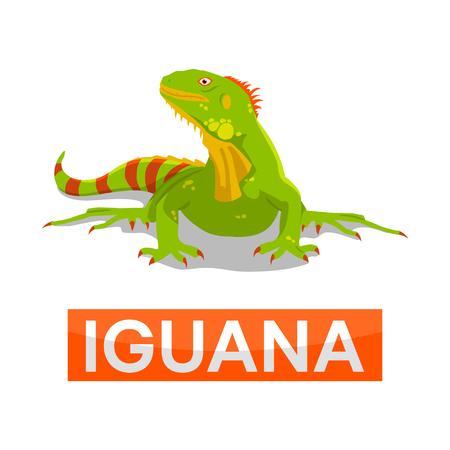 dashing: green iguana without line Illustration
