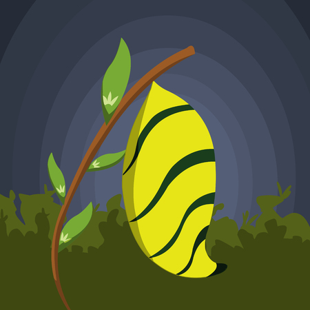 cocoon: The Yellow Cocoon Illustration
