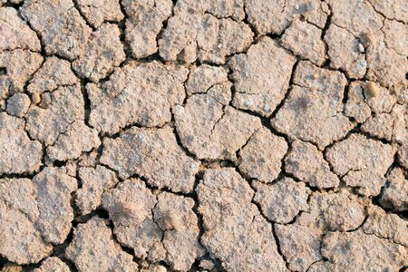 rainless: Abstract soil cracked