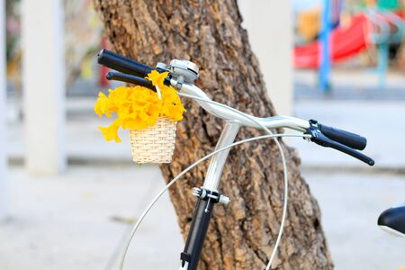 swain: Yellow flowers a basket on a bicycle blur background