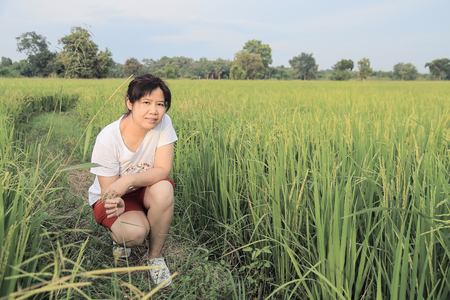 asian woman and rice paddy filed shallow depth of field