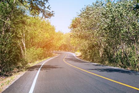 Travel road on summer Country side,Road with trees beside Concept  Stock fotó