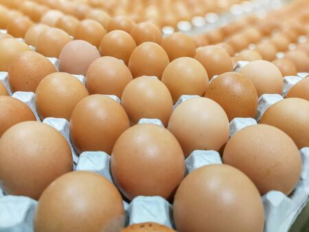 Brown chicken eggs in the egg tray,fresh raw chicken eggs in package for sale in supermarket Stockfoto