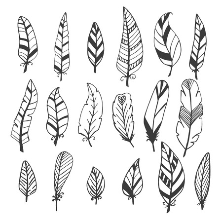 feather vector: Ethnic feather vector set. Hand drawn collection. Vector illustration