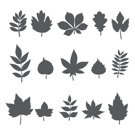 Silhouettes of tree leaves. Autumn leaf collection. Vector illustration Vettoriali