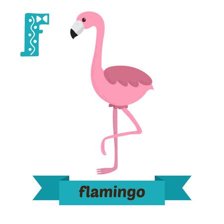 Flamingo. F brief. Schattige kinderen dier alfabet in vector. Grappige cartoon dieren. vector illustratie