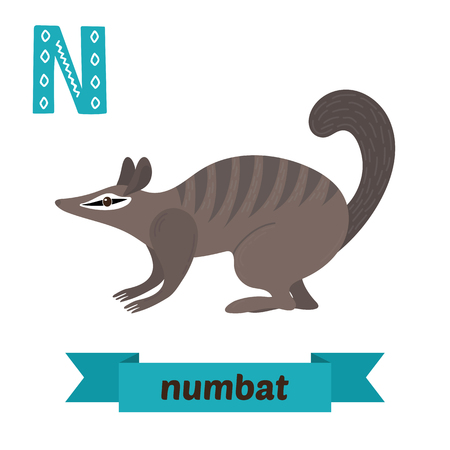 Numbat. N letter. Cute children animal alphabet in vector. Funny cartoon animals. Vector illustration