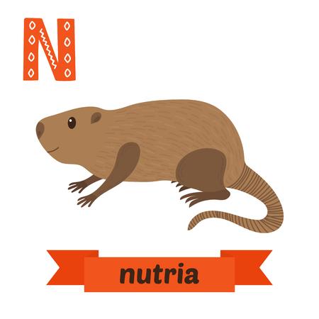 Nutria. N letter. Cute children animal alphabet in vector. Funny cartoon animals. Vector illustration