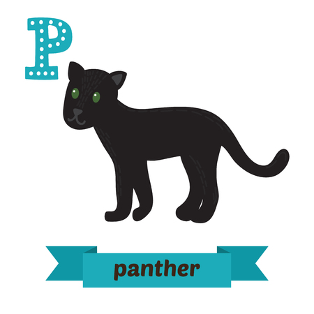 undomesticated: Panther. P letter. Cute children animal alphabet in vector. Funny cartoon animals. Vector illustration