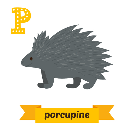 porcupine: Porcupine. P letter. Cute children animal alphabet in vector. Funny cartoon animals. Vector illustration Illustration