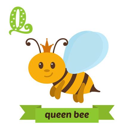 abeja reina: Abeja reina. letra Q. Lindo alfabeto de los ni�os de los animales en el vector. Los animales divertidos dibujos animados. ilustraci�n vectorial