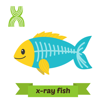 x xray: X-ray fish. X letter. Cute children animal alphabet in vector. Funny cartoon animals. Vector illustration