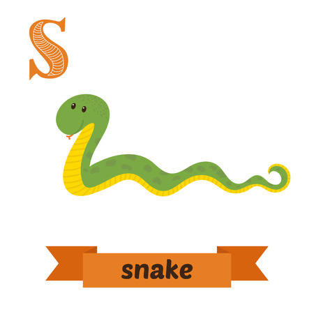 children s: Snake. S letter. Cute children animal alphabet in vector. Funny cartoon animals. Vector illustration