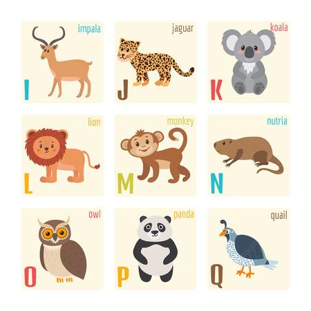 cartoon jaguar: Cute zoo alphabet with animals in cartoon style. Impala, jaguar, koala, lion, monkey, nutria, owl, panda, quail. Vector illustration