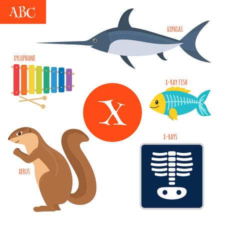 x xray: Letter X. Cartoon alphabet for children. Xylophone, x-rays, x-ray fish, xerus, xiphias. Vector illustration Illustration