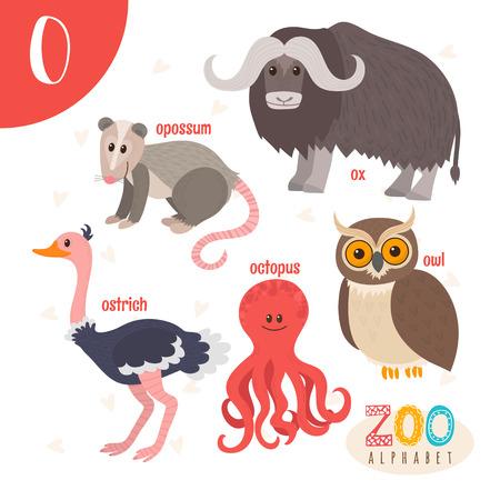 opossum: Letter O. Cute animals. Funny cartoon animals . ABC book. illustration