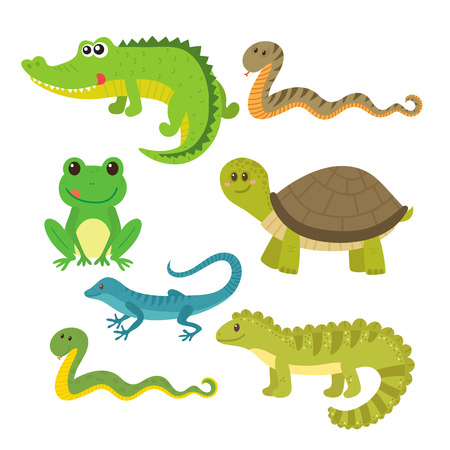 Ensemble de reptiles. Animaux sauvages. illustration Banque d'images - 63113149