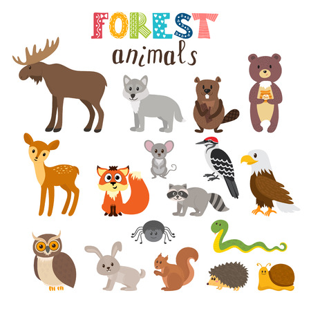 hedgehog: Set of cute forest animals. Woodland. Cartoon style. illustration