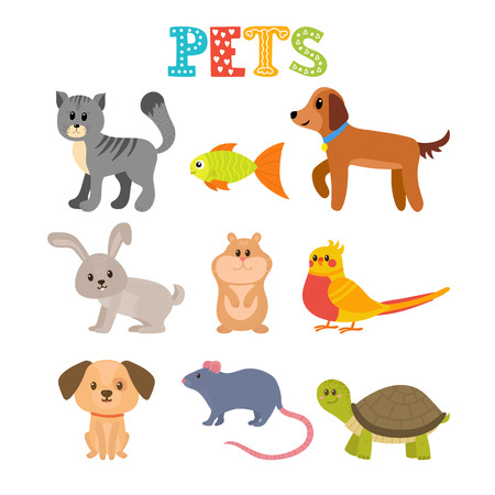 Set of pets. Cute home animals in cartoon style. illustration