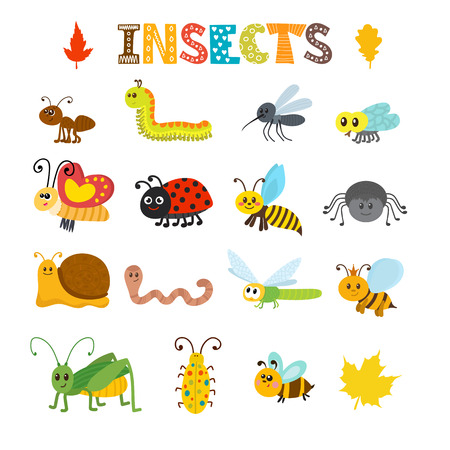 set of cartoon insects. Colorful bugs collection. illustration Illustration