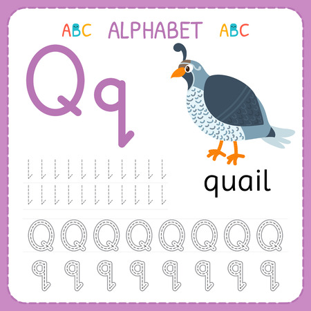 Alphabet tracing worksheet for preschool and kindergarten. Writing practice letter Q. Exercises for kids. Vector illustration