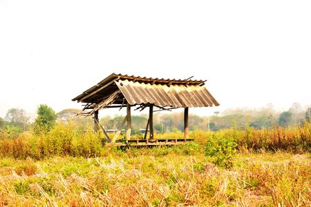 Farmers in Thailand have built huts in the rice to rest during lunch break.