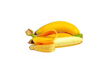 easily: Banana plants grow easily with the use of shoots.