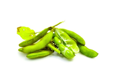 provide: Beans are annual crops that provide food protein. Stock Photo