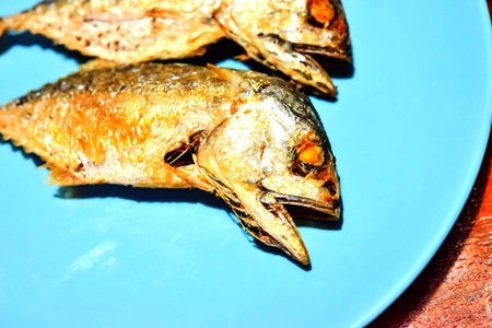 Fish feed on all parts of Thailand and are affordable.