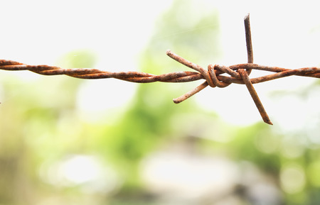 Barbed wire is used to represent the territory.