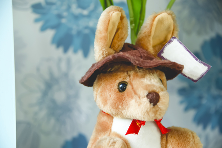 taken: Kangaroos are cute animals, another was taken to create a doll. Stock Photo