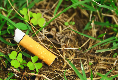 blacktop: The remaining debris from cigarette smoking will be left with no one interested. Stock Photo