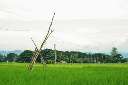 desired: Small wires are hung on wooden poles to import it to the desired use. Stock Photo