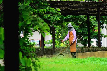 Le jardinier utilise des outils pour tondre l'herbe.