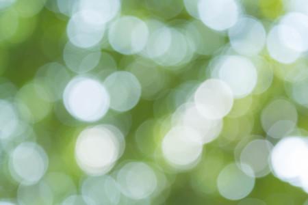 Bokeh on green background