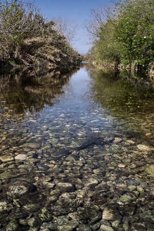 waters: Walking on Waters