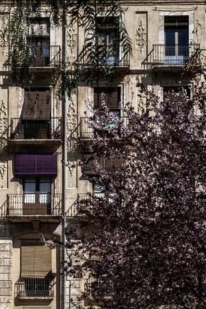 toulon: Toulon balconies