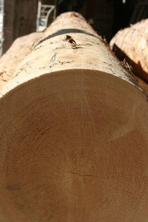 logging railroads: legname