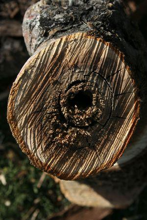 logging railways: wood Stock Photo