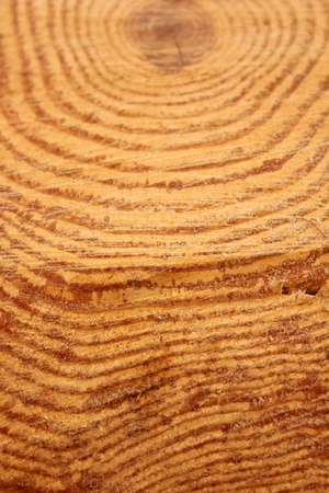 wood Stock Photo - 9291744