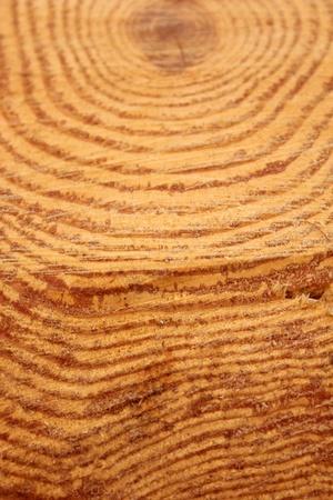 wood Stock Photo - 9291744