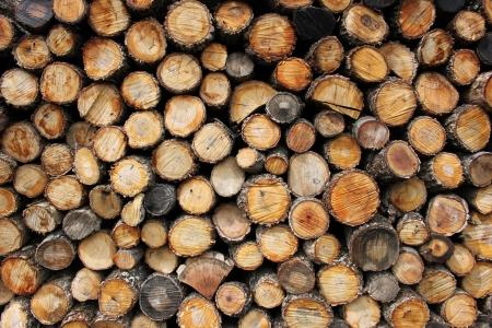 floor coverings: wooden Stock Photo