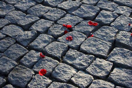 Paving stones texture photo