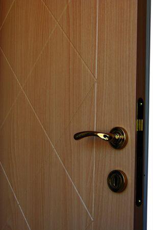 Wood Door Stock Photo - 16187710